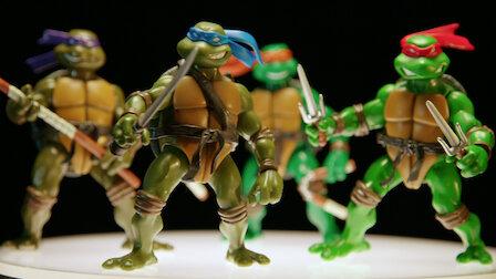 觀賞忍者龜。第 3 季第 1 集。