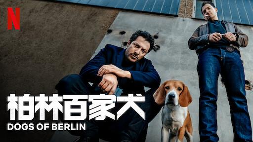 柏林百家犬