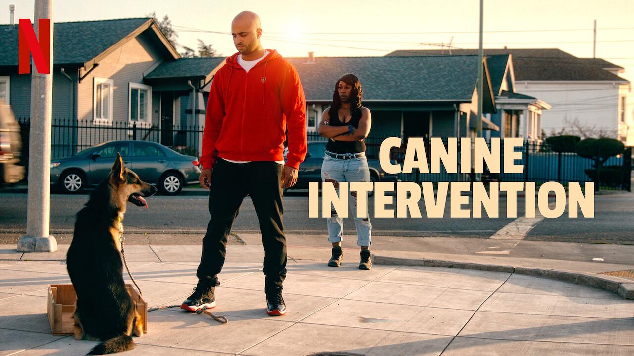 Canine Intervention on Netflix Canada